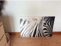 Ikea zebra wall art
