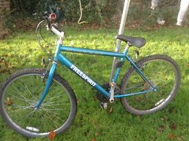 Boys/Mens Mountain bike