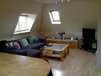 Lovely homely flat on the border of Chiswick and Hammersmith