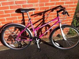 CARRERA CITY TOWN BICYCLE SERVICED