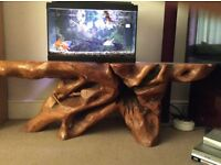 Only One Of A Kind Solid Teak Tree Root Table