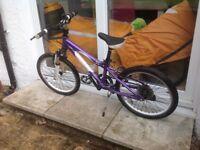 "Girls mountain bike 20"" wheels"