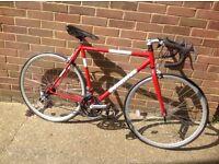 Retro Style Viking Clubmaster Road Bike 14 speed