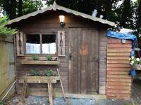 Garden shed 8x6 plus contents