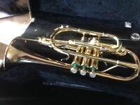 Yamaha Zeno cornet