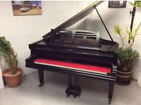 Stunning Black Niendorf Baby Grand Piano & Vintage Stool - CAN DELIVER