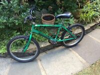 Raleigh bicycle, vgc could deliver