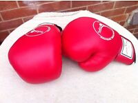 Boxing gloves 24Oz by Serious fitness