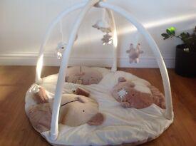 Gorgeous Baby Gym / Playmat