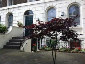 Beautiful Georgian house near Oval tube, 4 bedroom, available weekly/monthly - short or long stay.