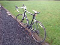 Forme Vitesse Racing Bike - SCGOne23 Sports Comfort Geometry