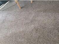 New Carpet Piece