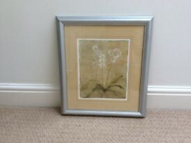 Framed print - White Flowers by John Lewis