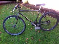 holdsworth coniston mountain bike adult