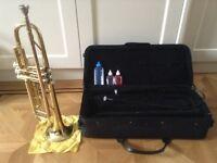 Trumpet - Gold Rosetti Series