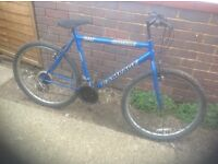 Adults Rampage Mountain Bike 15 speed