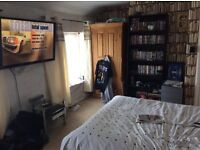 One bed flat looking for a one bed nr to town with garden