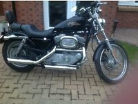 Harley-Davidson XL883 Custom - GREAT CONDITION