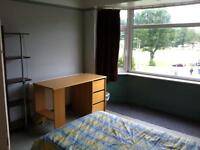 Room available In a friendly student house near Brighton & Sussex universities
