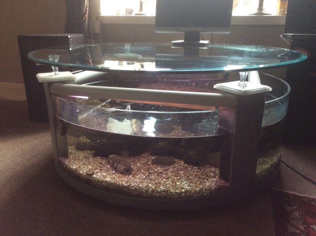 Fish Tank Circular Coffee Table In Lanark South Lanarkshire Gumtree