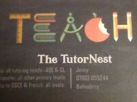 Experienced tutor available
