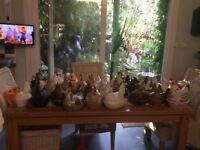 Chicken egg holders