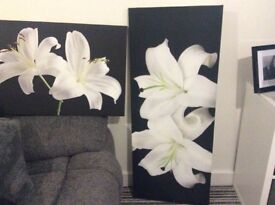 2 beautiful canvas pictures