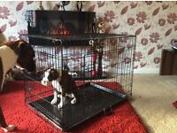 Large dog cage new never been used