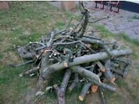 Apple wood free - timber - firewood