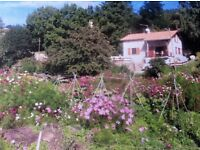 Holiday House Sleeps 8 in a village in the foothills of the French Pyrenees