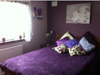Sunny double room in two bedroom house