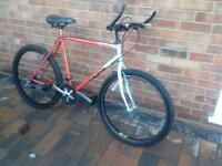 Men's Bicycle, garage clearout