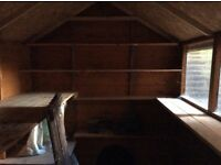 Shed - wooden with felted roof in good condition