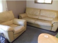 Arm chair and 3 seater sofa bed