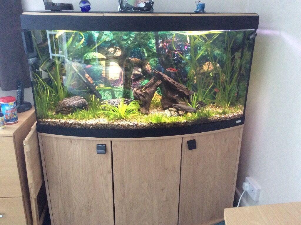 fluval vicenza 260 led aquarium and cabinet in oak in sutton coldfield west midlands gumtree. Black Bedroom Furniture Sets. Home Design Ideas