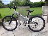 Ridgeback MX24 Terrain children's bike