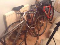 Bikes for sale (Specailist)