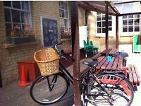 Stolen Bicycle: Pro-Bike with Bobbin Basket