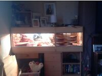 Extended Vivarium for sale
