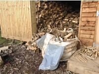 Logs for sale good quality mixed hardwood