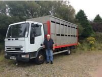 7.5 tonne lorry for sale