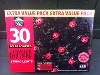 NEW ladybird solar string lights (30)