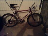 Saracen vintage tuff trax mountain bike