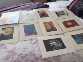 Cards fab prints