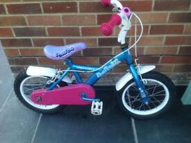 Girls 14 inch Apollo Bike