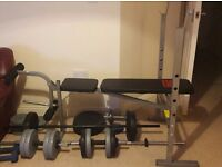 Pro Power Weight bench with Weights and dumbells