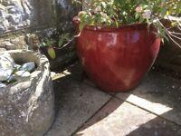 Large red glaze plant pot