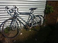 Carrera gryphon road bike large frame racer needs tlc selling cheap bicycle for men tdf zelos ltd