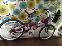 "Girls 20"" 6 speed mountain bike"