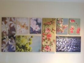 8 Canvas pictures